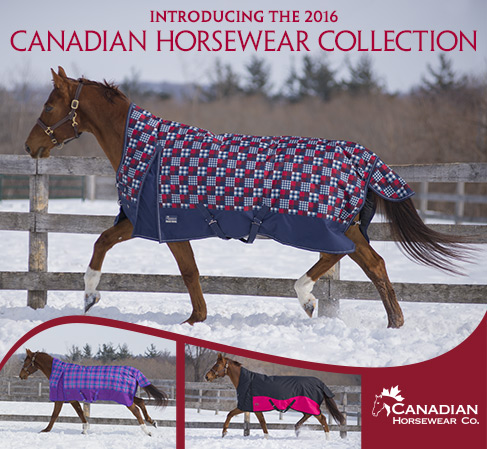2016 Canadian Horsewear Collection