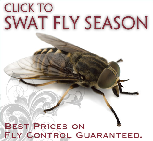 Pleasant Ridge Fly Control Best Prices Guaranteed