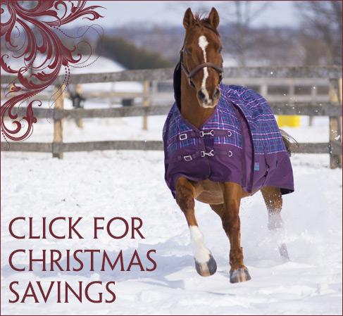 Pleasant Ridge Christmas Specials