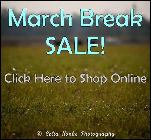 March Break Sales