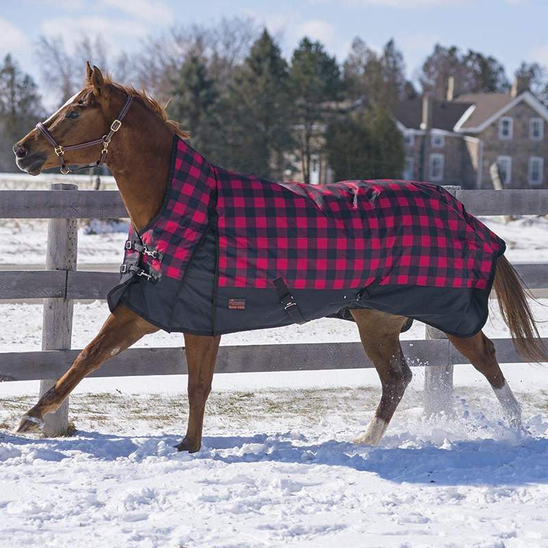 2018 Buffalo Plaid Rainsheet by Canadian Horsewear