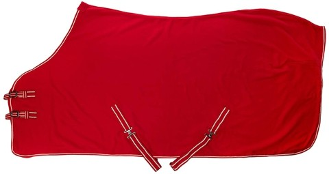 Red Polar Fleece Sheet