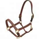Leather Bromont Halter with matching stitching
