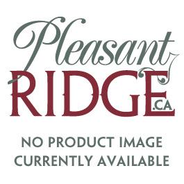 3/4 Weaver Turquoise Flower Dog Collar