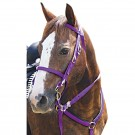 5 PIECE NYLON TACK SET *New Colours*