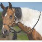 Deluxe Bitless Bridle