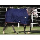 Big D Devlyn Heavy Turnout Blanket