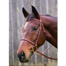 HDR Advantage Plain Raised Bridle With Laced Reins