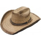 Country Star Palm Hat