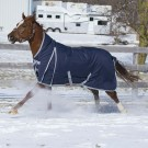 2018 Hudson Storm 160gm Fill Blanket By Canadian Horsewear Co.