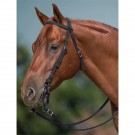 Mustang Nylon Headstall Set