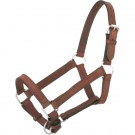 Weanling Leather Halter
