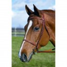 HDR Fancy Raised Bridle