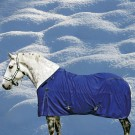 2018 Canadian Horsewear Big Fella Storm