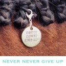 MBC Bridle Charm -Never Give Up
