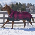 Buffalo Plaid Rainsheet by Canadian Horsewear