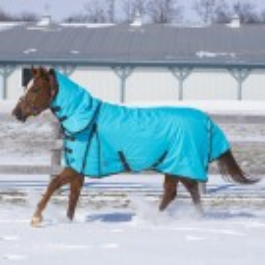 2018 Canadian Horsewear Diablo Storm Turquoise