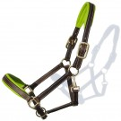 Sage Family Equestrian Halter - Shop online in Canada for English and Western Tack