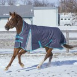 Graphite Maxim Rainsheet by Canadian Horsewear