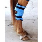 EquiCool Down Hock Wrap