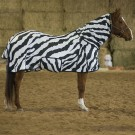 Deluxe Zebra Print Fly Sheet with Belly Band & Full Neck