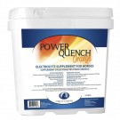 Strictly Equine Power Quench Electrolytes - Orange 13.6kg Special Order Size